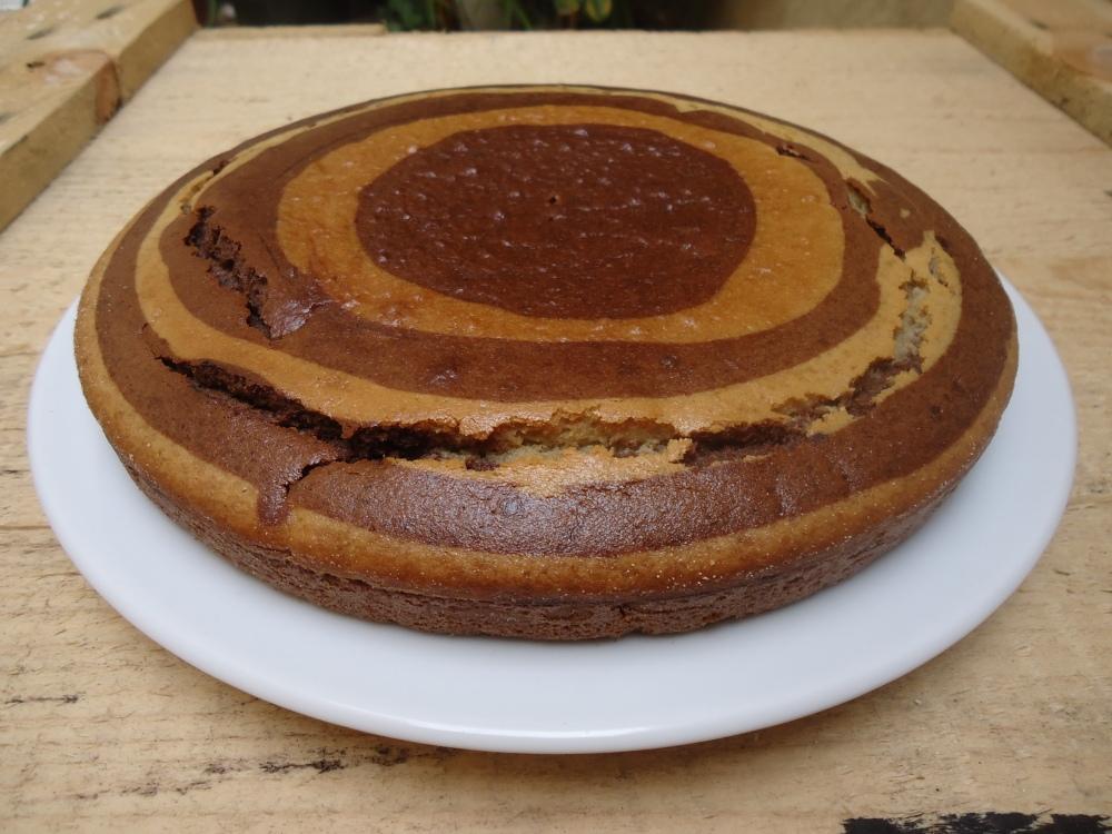 Gâteau façon  yaourt (sans yaourt ni œuf), végan quoi !
