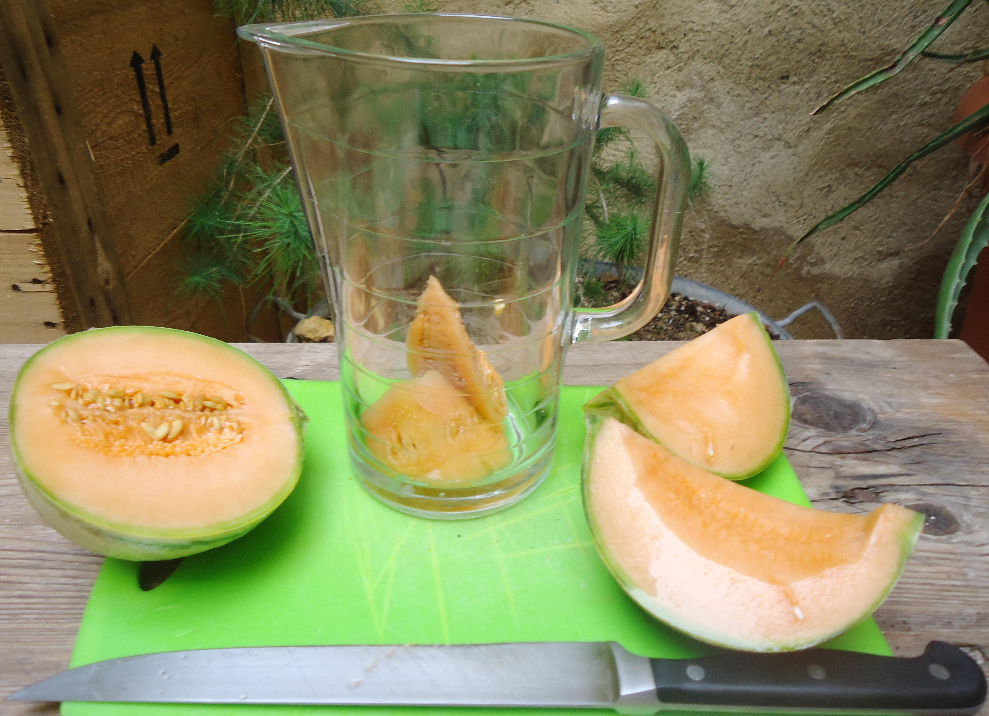 Recette b te comme chou enfin plut t comme melon cuisiner en paix - Cuisiner la veille pour le lendemain ...
