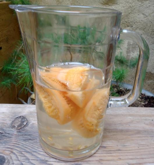 eau-melon-aromatisée
