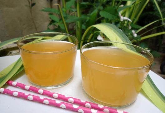 eau-aromatisée-melon