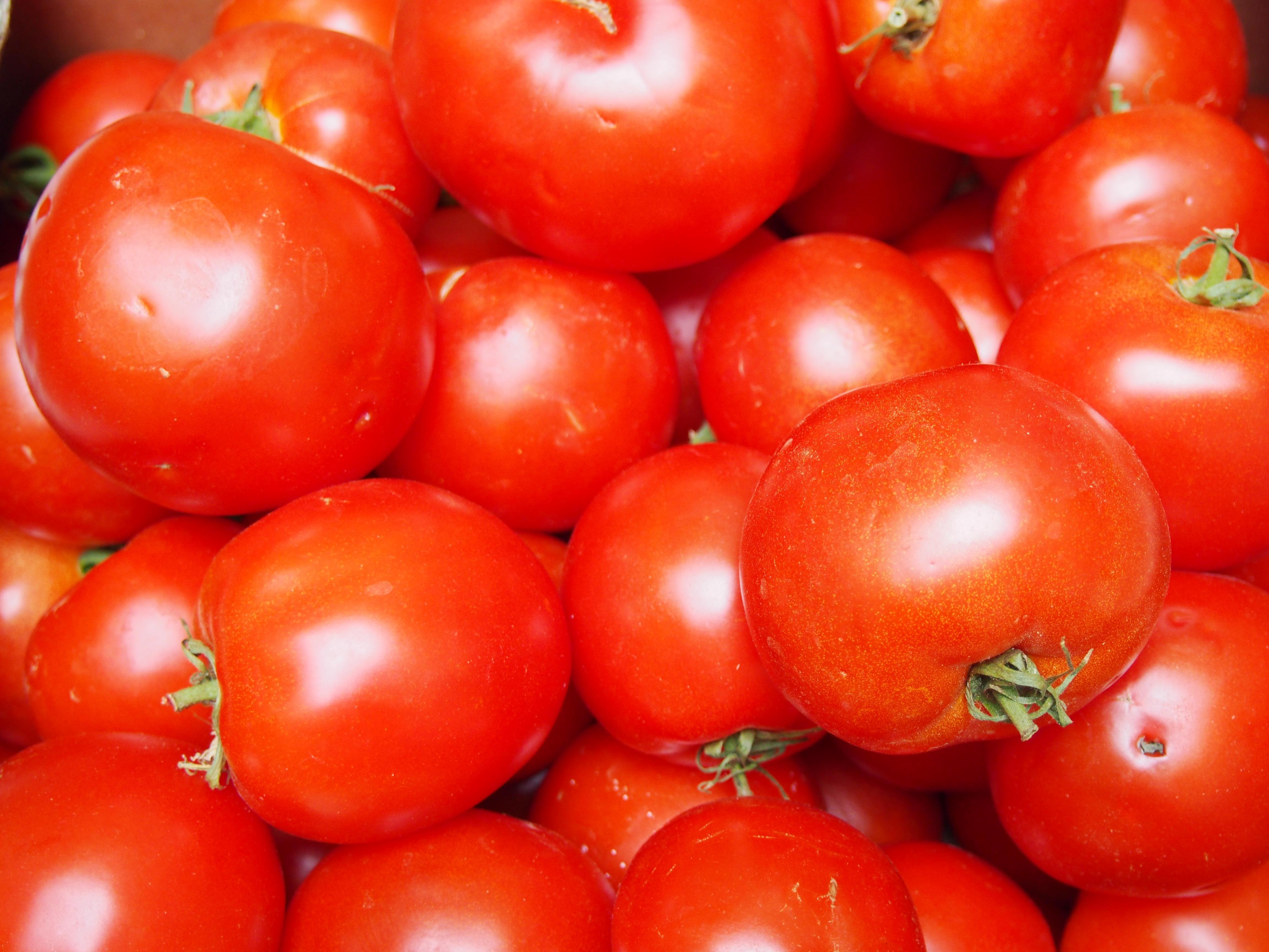Coulis de tomate cuisiner en paix - Cuisiner des tomates sechees ...