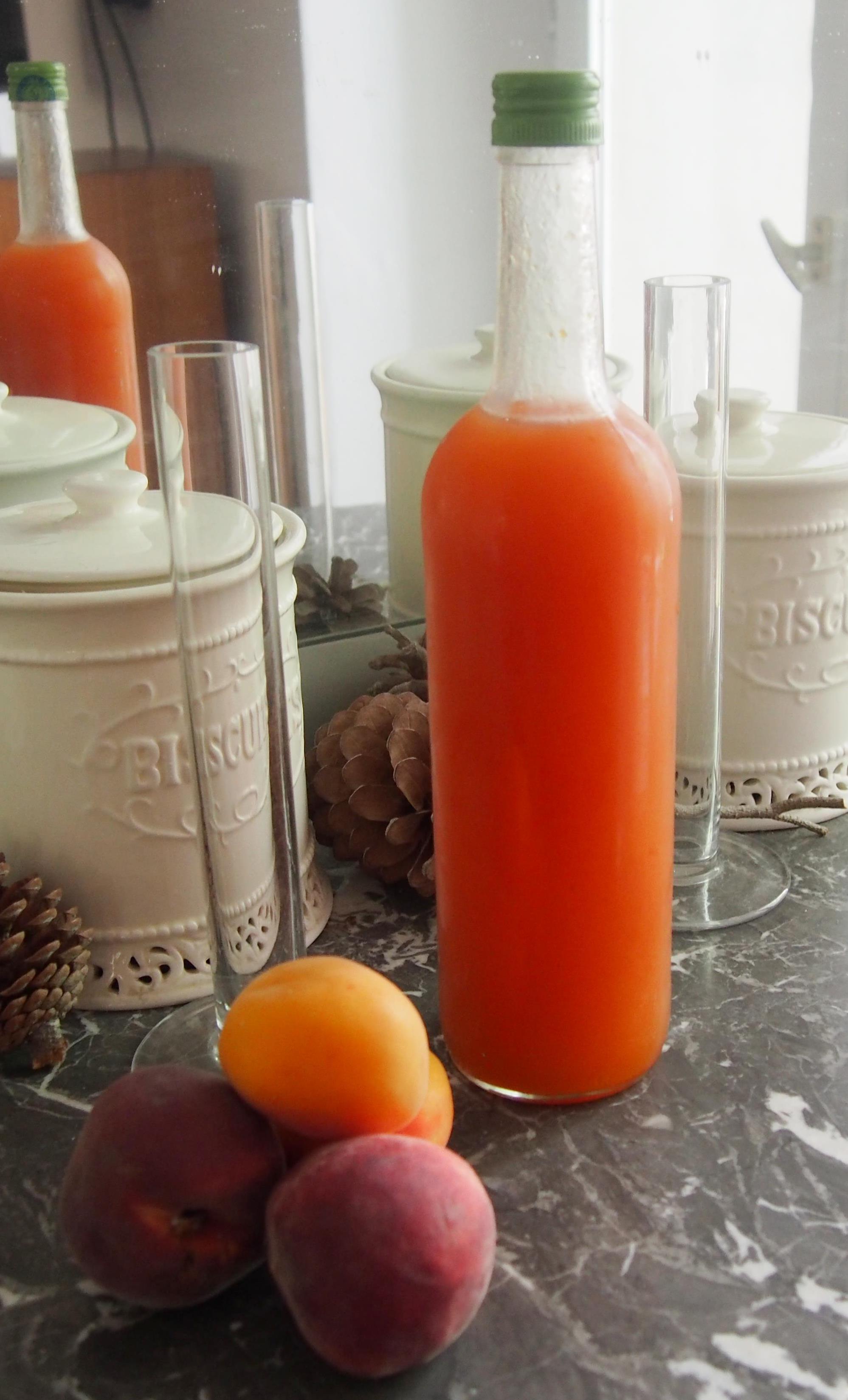 Canne A Peche Fait Maison sirop de pêche et d'abricot fait maison. | cuisiner en paix