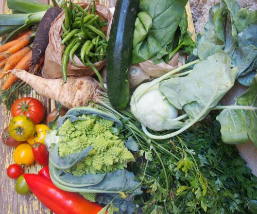 légumes-bio-narbonne
