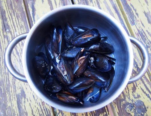 moules-Noilly Prat