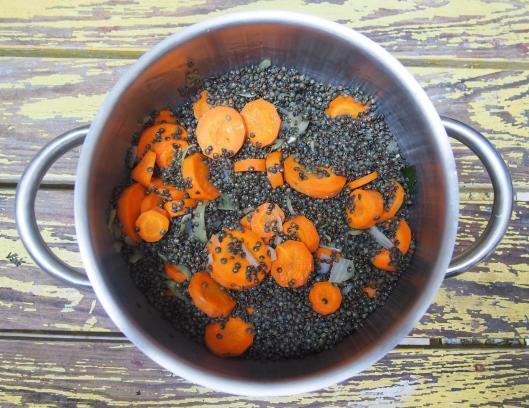 lentille-carottes