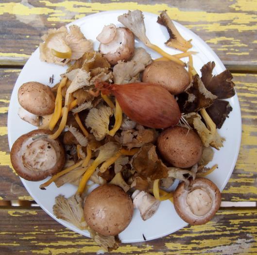 poêlée-champignons