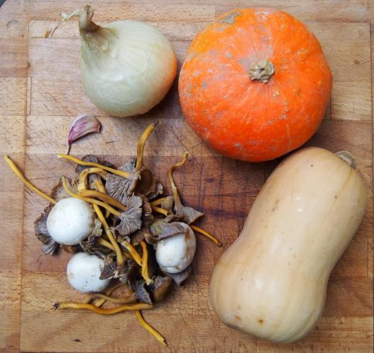 purée-butternut-potimarron-champignons-végan