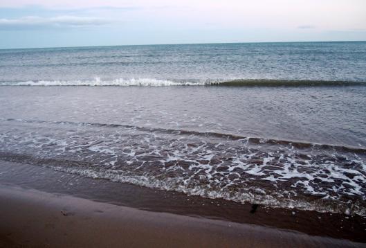 gruissan-plage-chalet