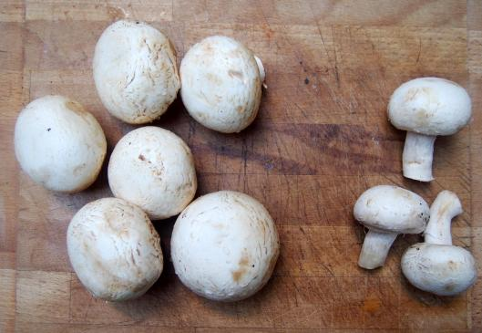 champignons-végan-sans gluten