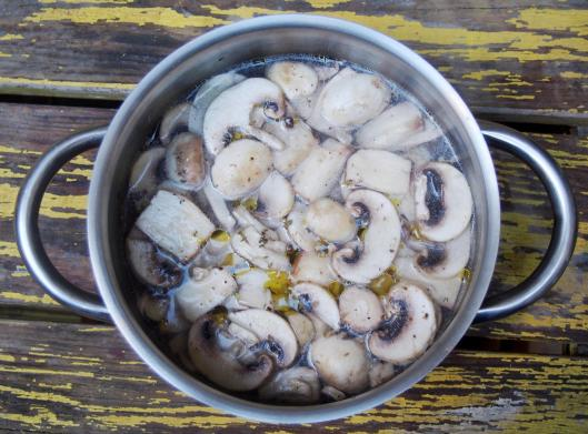 jus champignons-végan-sans gluten