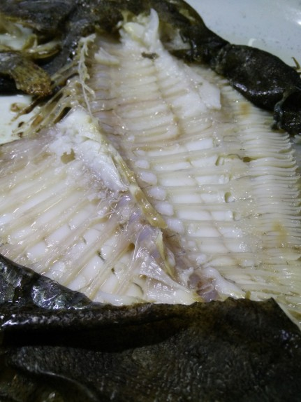 filet-turbot-sans gluten-combinaisons alimentaires