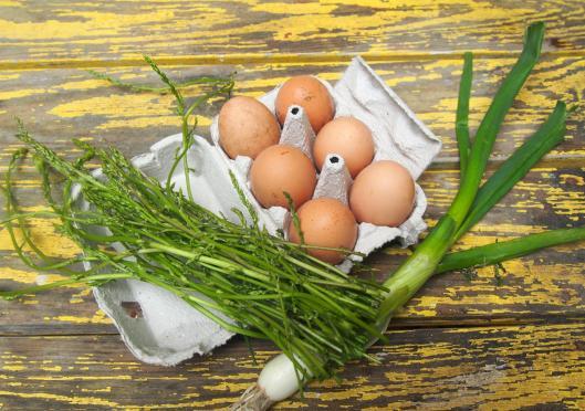 asperges sauvages-pique nique-omelette-sans gluten-blog Narbonne-blogueuse Narbonne