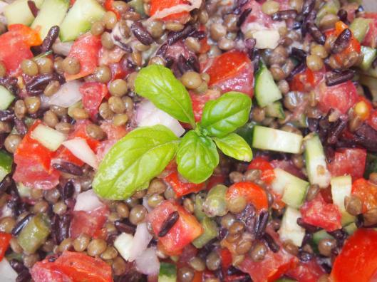 salade végane-lentille-riz noir-tomate-poivron rouge-mini concombre-purée de noix de cajou-régal végétal d'ortie-végan-sans gluten-blog Narbonne-blogueuse Narbonne