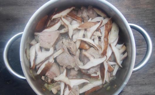 veau-sauté de veau-légumes-shiitaké-cuisson vapeur-combinaisons alimentaires-sans gluten-blog cuisine-blogueuse Narbonne-blog Narbonne