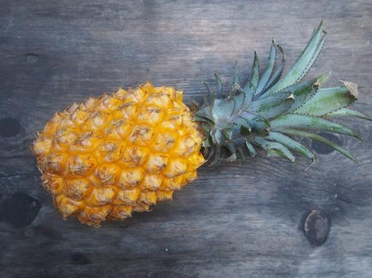 apéritif-idée apéritif-apéritif dinatoire-ananas Victoria-crevette-sauce cocktail-sans gluten-blog Narbonne-blogueuse Narbonne